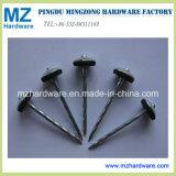 E. Galvanized Twisted Shank Umbrella Head Roofing Nail