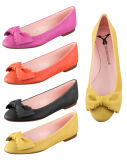 Colorful Ladies Shoes (20120618a)