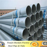 "6"" Inch Welded Gi Pipe/Tube Made in Tianjin Manufacturer"