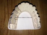 Dental Crowns and Bridge Made in China Dental Lab