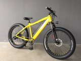 New Model Paladin-R Fat Tire Hot Sale 48V 500W Power Moutain Ebike