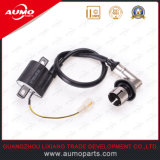 New Motorcycle Ignition Coil for Longjia Lj50qt-4 50cc