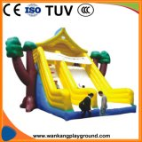 Indoor Inflatable Playground Play House (WK-W1112)
