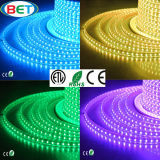 SMD5050 IP67 LED Light Strip Indoor&Outdoor Decoration