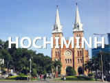 Sea Shipping Feright Agent From Qingdao to Hochiminh Cat Lai
