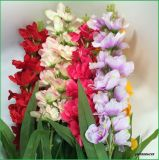 Silk Artificial Flowers Delphinium Fake Flowers for Home Decoration Wholesalers