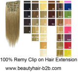 Clips Hair Extension