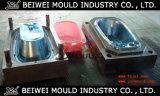 Injection Plastic Bathtub Mould