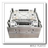 China Professional Precision Plastic Injection Mould (WBM-201001)