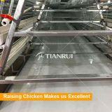 Conveyor Belt Broiler Poultry Manure Ordure Cleaning System