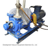 2sk Large Power Double Stage Liquid Ring Vacuum Pump
