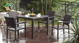 Garden Rattan Dining Table and Chair Set Furniture (BZ-D001)