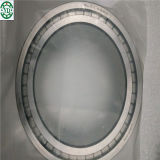 SL Nncl Full Complement Cylindrical Roller Bearing SL014920 NSK Japan