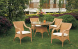 Outdoor Furniture/Rattan Set (B001)