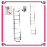 2 Section Aluminum Extension Ladder with 7 Step