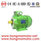 Hm (Y2, YE2, YE3) Series Three Phase High/ Premium Efficiency Electric Motor