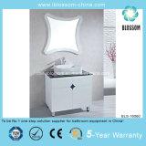 North American Soild Wood Leg Bathroom Cabinet (BLS-16060)