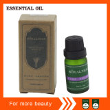 Anti-Aging Nourishing Essential Oil