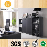New Design Fashionable Book Cabinet for Office Used (C3)