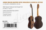 BV/SGS Certificate Supplier---China Aiersi Smallman Classic Guitar for Sale