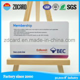 Famous Custom Design Plastic PVC Gift Loyalty Card with Special Artwork