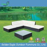 Comfortable Outdoor Combination Wicker Sofa Set (S0013)