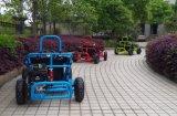 Best Selling Blue 80cc Gas Powerful Mini Go Kart for Kids