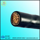 Copper/Aluminium Conductor XLPE Insulation PVC Sheath Power Cable Wire