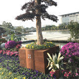 FO-9C56 Corten Steel Flower Pot for Outdoor Decoration