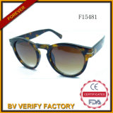 F15481 New Plastic Trend Sunglasses with Good Design