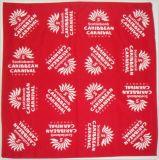 Wholesale Cheap Paisley Pattern Custom Cotton Bandana Scarf