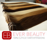 European Remy Clip in Human Hair Extension with Best Quality