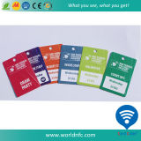 Combo Card/Die Cut Card/Special Shape PVC Card for Business Travelling
