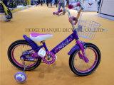 Latest Sale New Girl Bike/Girl Bicycle/Baby Bicycle/Kids Bike