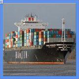 Container Shipping From Guangzhou, China to Karachi / Nhava Sheva (IC0025)