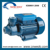 Domestic Surface Electric Clean Water Pump (PM-45)