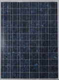 265W TUV Ce Idcol Approval Poly-Crystalline Solar Module for Idcol Irrigation Project