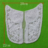 Factory Direct Sale Cotton Embroidery Lace Collar (cn55)