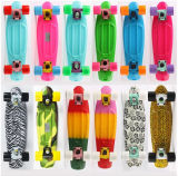 Skateboard with Cheapest Price (YVP-2206)