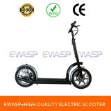 14 Inch High Quality Adults Electric Scooter with Ce