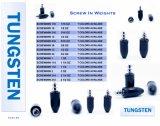 High Quality Tungsten Round Dropshot Screw in Weight
