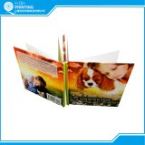 Children Hard Cover Book Printing Supplier