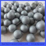 Carbide Blank Tungsten Carbide Pellet