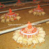Automatic Poultry Farming Equipment for Breeder Chicken