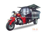 200cc Garbge Tricylce/Five Wheel Motorcyle with Cargo (TR-9)