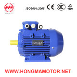 Closed Type Double Speed Induction Motor (132S-4P/2P-4.5/5.5KW)