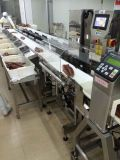 Automatic Weight Grading System for Fillet