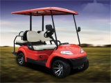 Customized High Performance Golf EV Lithium Battery Pack