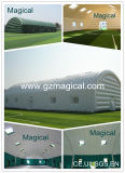 Special Inflatable Tunnel Tent (MIC-122)