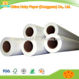 Specialty Paper Type Tracing Paper Use Digital Tachograph